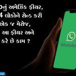 WhatsAppનું અમેઝિંક ફીચર, એક સાથે 264 લોકોને સેન્ડ કરી શકો છો એક જ મેસેજ, જાણો શું છે આ ફીચર અને કેવી રીતે કરે છે કામ ?