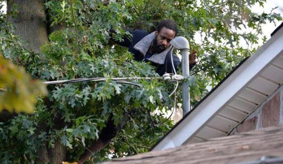 પોલીસથી બચવા માટે 3 દિવસ સુધી ઝાડ પર બેઠો રહ્યો આ માણસ, કહ્યું - પડી જઈશ પરંતુ હાથમાં નહિ આવું!